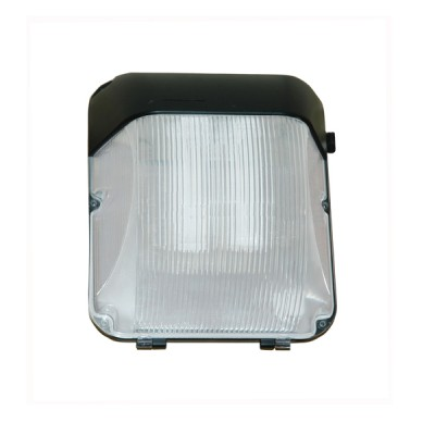 Motion Sensor LED Wall Light